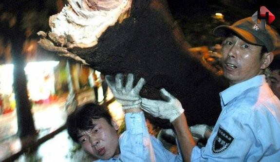 Çin'i Tayfun Vurdu 13 ölü