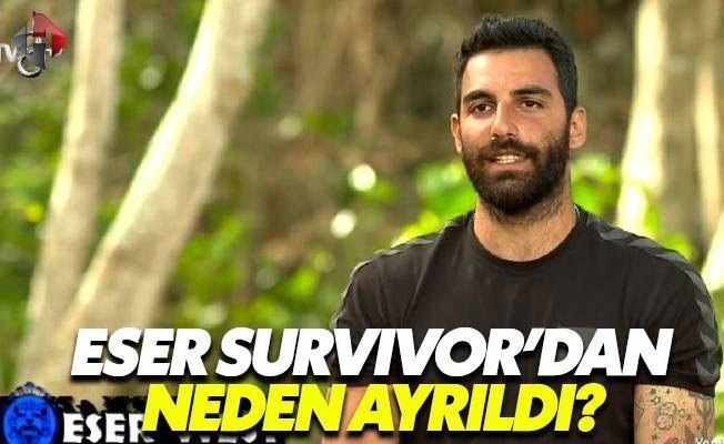Survivor'a Damgasını Vuran Ayrılığın Nedeni Ne?