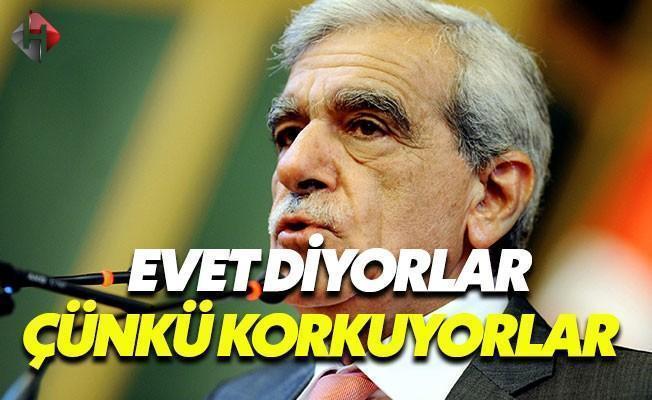 Türk: Keşke Yalnızca 'Evet' Seçeneği Olsaydı