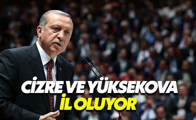 """Erdoğan: """"Şırnak ve Hakkari'yi nasıl şehir yapmışlar şaşırırsınız"""""""