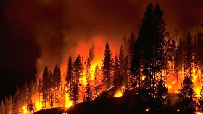 Balıkesir'de 4 Ayrı Bölgede Yangın! Kundaklama Şüphesi Var