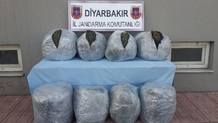 Diyarbakır'da 101 Kilogram Kubar Esrar Ele Geçirildi