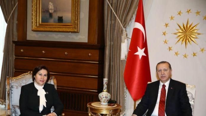 Cumhurbaşkanı Danıştay Başkanıyla görüştü