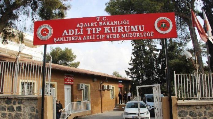 Cizre'de Öldürülen Teröristlerden 8'inin Cesedi Şanlıurfa'ya Getirildi