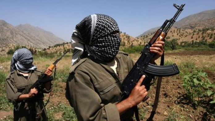 Suruç'ta PKK/PYD mensubu 1 terörist yakalandı