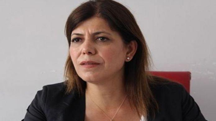 HDP'li Beştaş: Anayasa ile ilgili partimizin yetkili kurulları ile görüşeceğiz