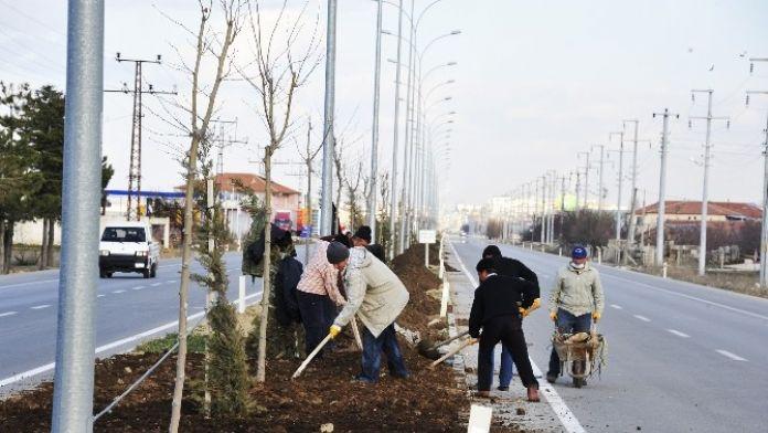 Karaman'da Refüjlerde Peyzaj Düzenlemesi Bu Yılda Devam Edecek