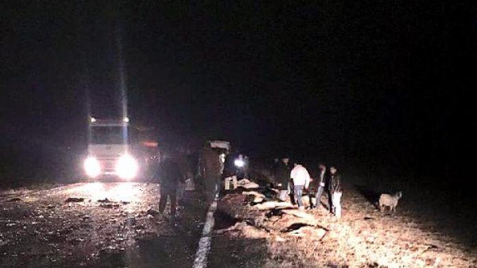 Karayoluna çıkan sürüye minibüs çarptı, 34 koyun telef oldu