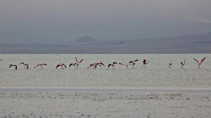 Çetiner: Seyfe Gölü'nün güzelliği kalıcı olsun