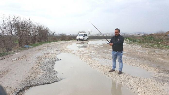 (Özel Haber) Ana Yolda Olta İle Balık Avladı