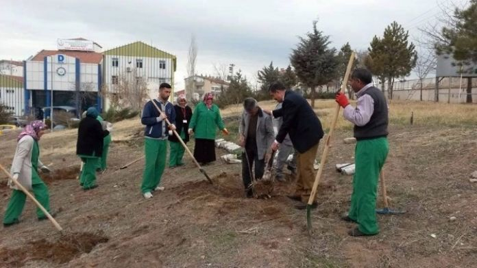 Aksaray Devlet Hastanesi Yeşilleniyor