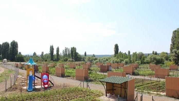 Beyşehir Belediyesi'nden Hobi Bahçeleri İçin Yeni Fırsat