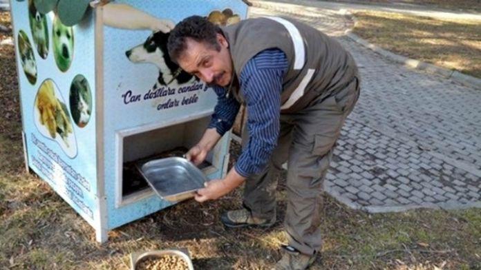 Erzincan'da Sokak Hayvanlarına Su Ve Mama Bırakıldı