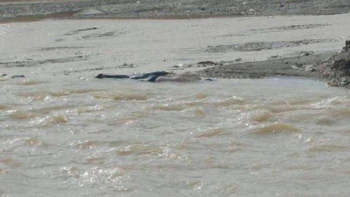 İran sınırına yakın köyde, kadın cesedi bulundu