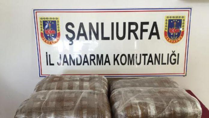 Şanlıurfa'da yolcu bagajında 50 kilo esrar, 2 gözaltı