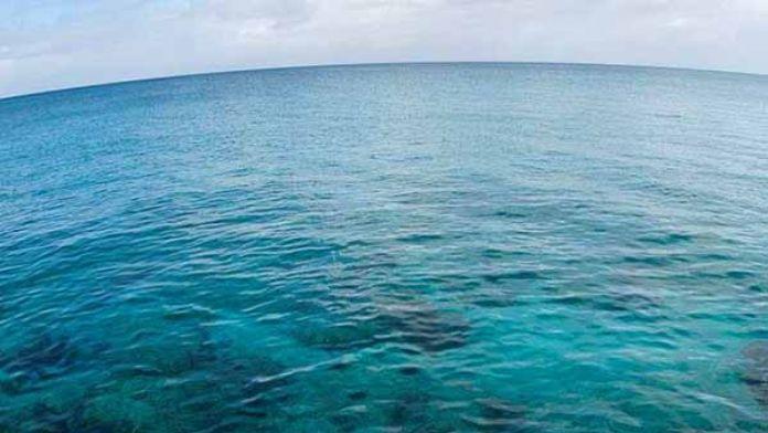 Dalyan Uluslararası Yüzme Yarışına Ev Sahipliği Yapacak