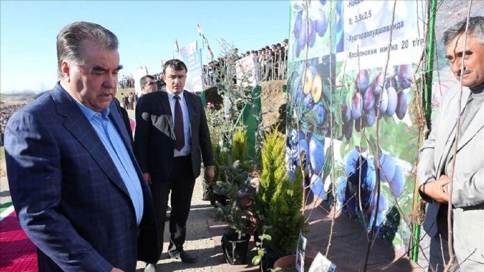 Tacikistan'da hedef Rusya'ya meyve ve sebze ihracatını artırmak