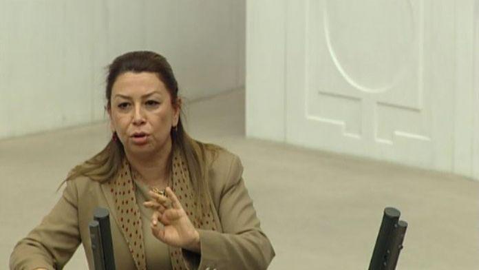 Çalık, TBMM'de Ağbaba'nın Konuşmasına Cevap Verdi