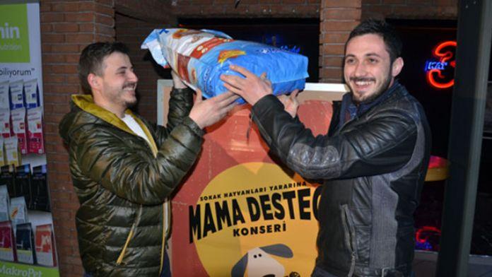 Sokak hayvanları için 'mama desteği' konseri