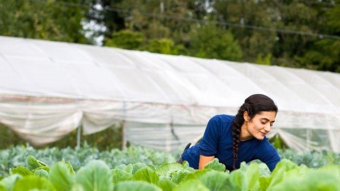 Genç Çiftçiye 30 Bin Lira Hibe Desteği