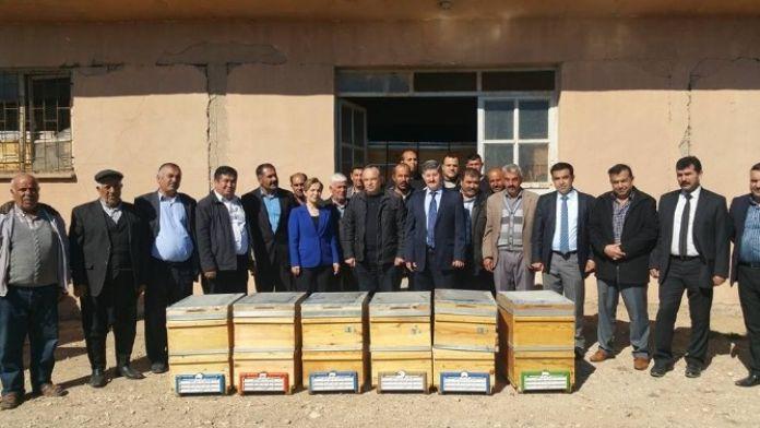 450 Arı Kovanı Bal Üreticisine Dağıtıldı