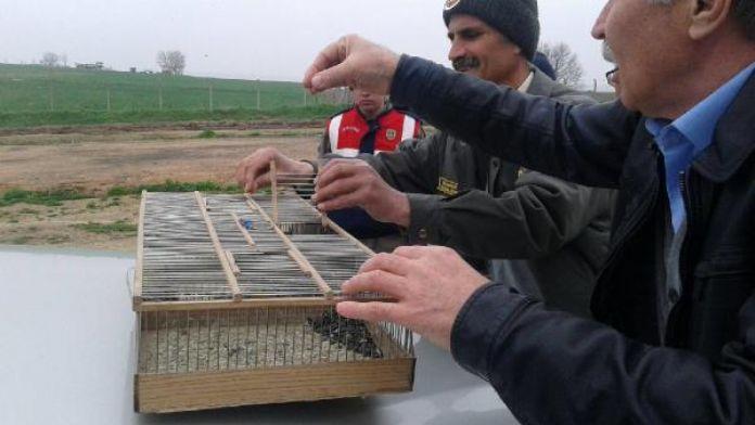 Kaçak kuş yakalayan avcıya 5 bin lira ceza