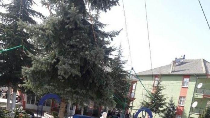 Beyşehir'in Dış Mahallelerinde Bahar Hazırlıkları