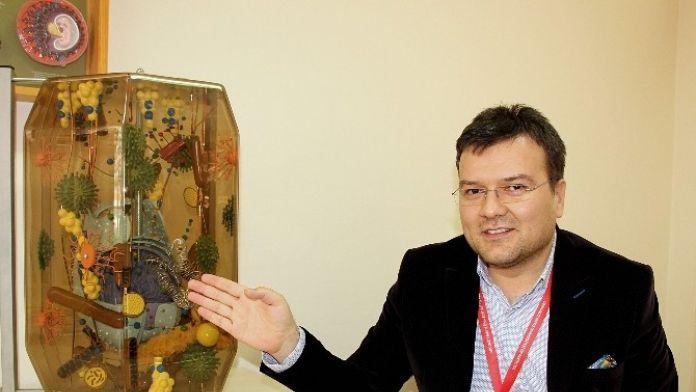 OMÜ'de 'Kök Hücre Araştırma Merkezi' Açılıyor