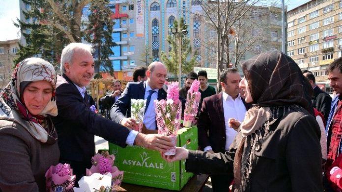 Başkan Kamil Saraçoğlu: Kütahya'da 1 Milyon Çiçek Toprakla Buluşuyor