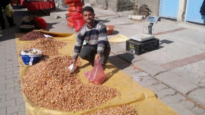 Tohumluk Kuru Soğan Fiyatları El Yakıyor