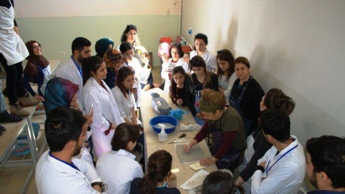 DÜ'de 'Kadın Ve Sanat' Çalıştayı Yapıldı
