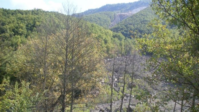 Ormanlık alanda 2 ceset bulundu