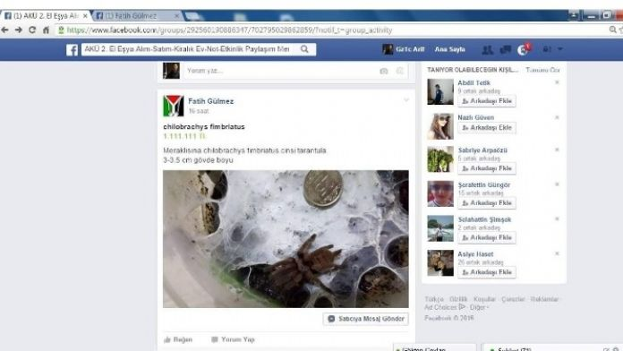 Afyonkarahisar'da Görüşmemiş 'Petshop' Satışı