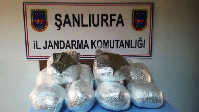 Şanlıurfa'da 36 Kilo Kubar Esrar Maddesi Ele Geçirildi