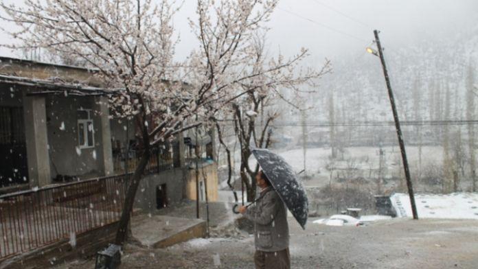 Beytüşşebap'ta kar esareti