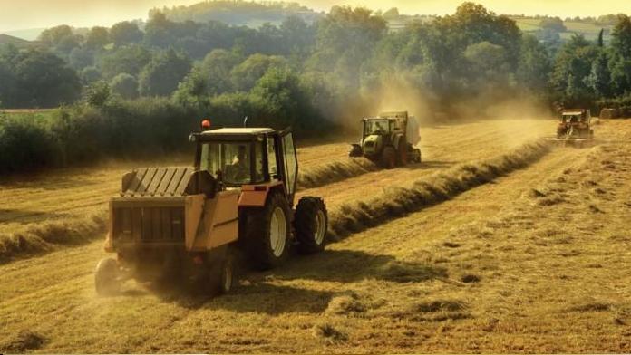 Sancak Bölgesinde Sürdürülebilir Tarım Projeleri
