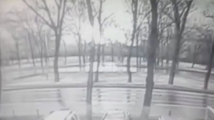 Rusya'da düşen uçağın kara kutusu bulundu