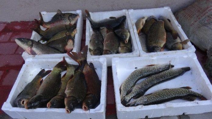 Kaçak Avlanan Balıkçılara Suç Üstü