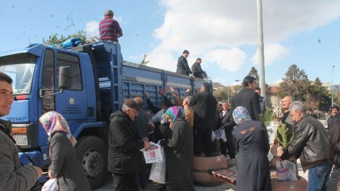 Erzincan'da Sarıçam İzdihamı