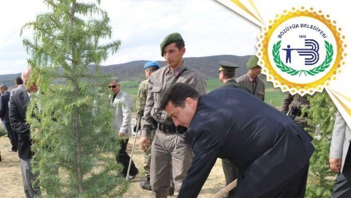 Başkan Bakıcı: 'Ormanlar Dünyamızın En Önemli Servetleridir'