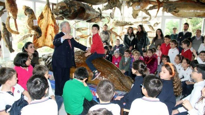 Minikler Deniz Canlıları Müzesi'ni Ziyaret Etti