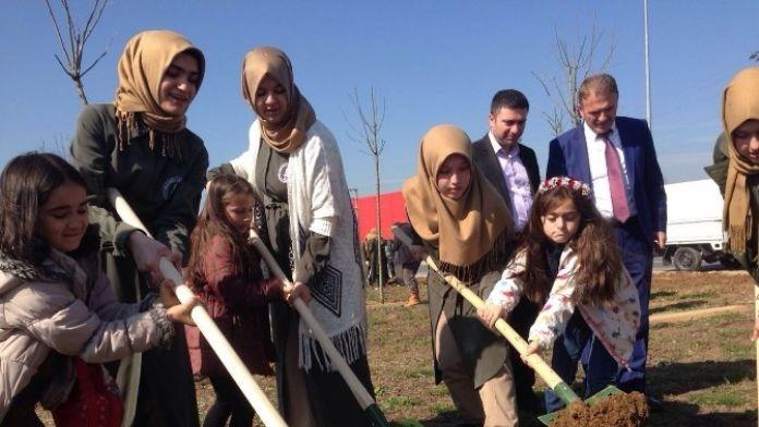 Orman Haftası'nda Abla Kardeş Fidan Diktiler