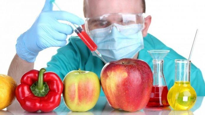 Genetiği Değiştirilmiş Bitkiler İKÜ'de Tartışılıyor