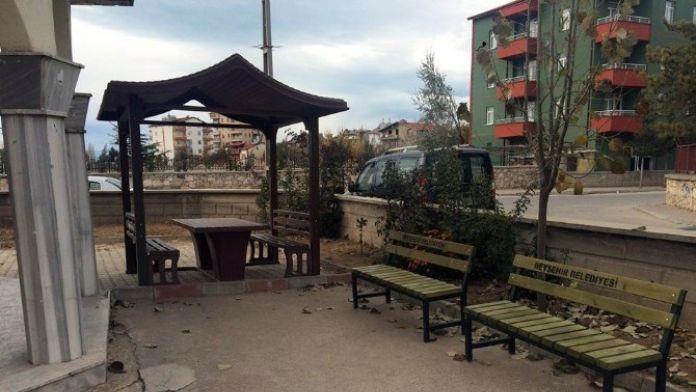 Beyşehir Belediyesi'nden Cami Bahçelerine Kamelya