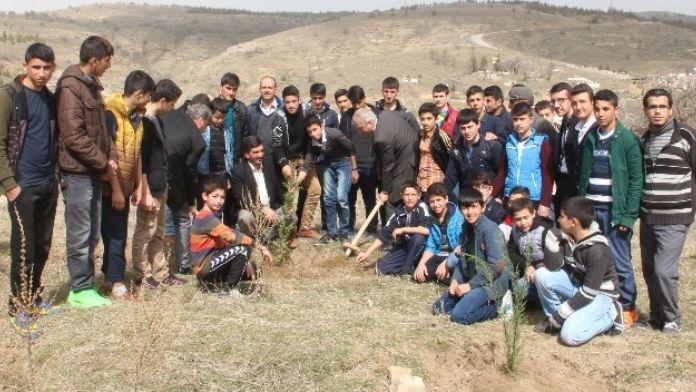 Elazığ'da Nevruz Ormanı'na Fidan Dikildi