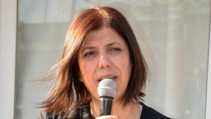 HDP'li Danış'tan çocuk hükümlülerle ilgili araştırma önergesi