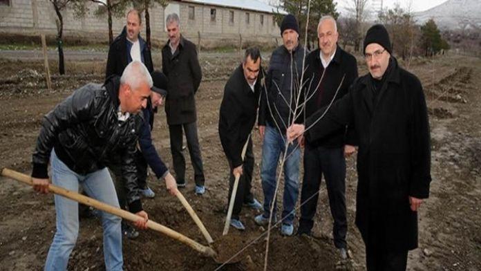 Kapama Dut Bahçesi Projesinde İlk Fidan Dikildi