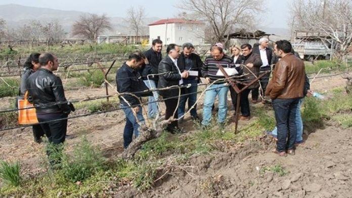 Elazığ'da Bitki Sağlığı Eğitimi Verildi
