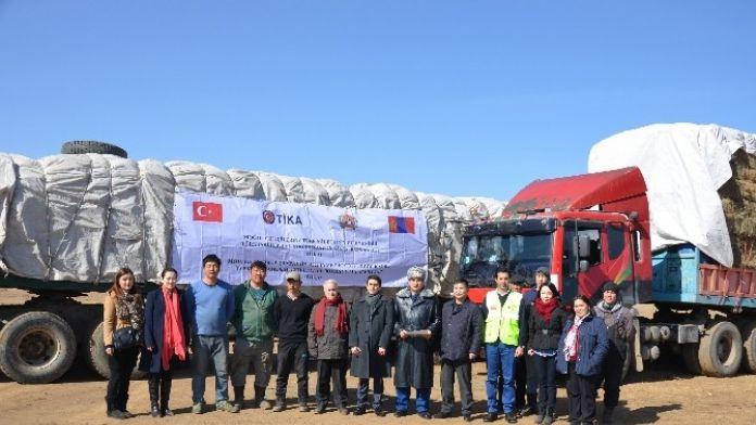 Türkiye'nin Moğol Çiftçilerine Ulaşan Dost Eli