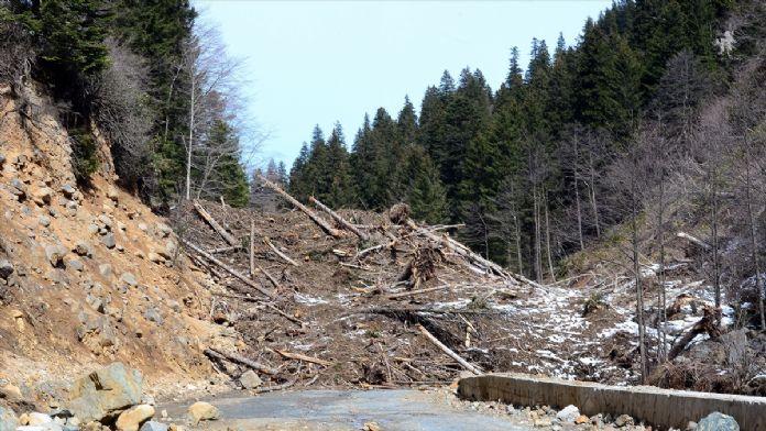 Çığ, milli parkın bitki örtüsünü tahrip etti